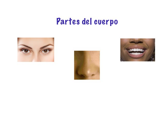 Partes Del Cuerpo by Stacy Newman