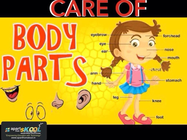 Care Of Body Parts by TinyTap creator