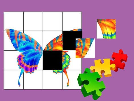 Butterfly Puzzle  by Liat Bitton-paz