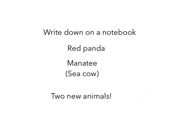 Red Panda Rescue And Learning Sea Cow by Flora Silver