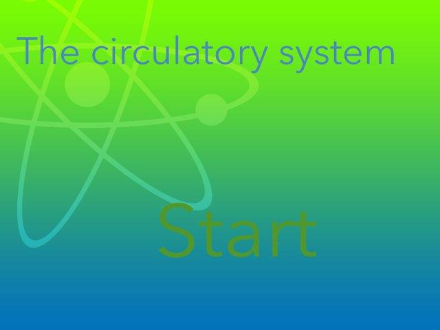 CIRCULATORY SYSTEM by Daragh Mcmunn