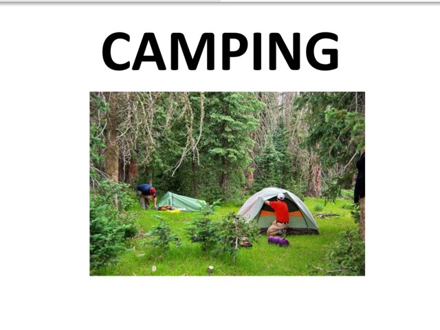 Camping Story by Erin Previte