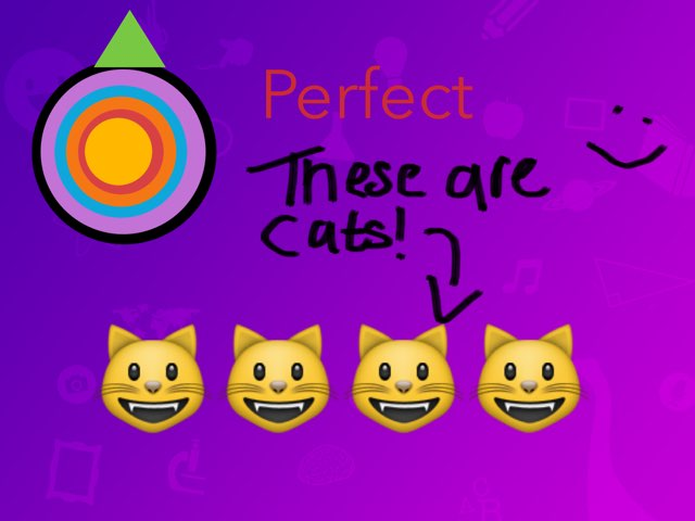 Can You Become A Cat? by Rob bailey
