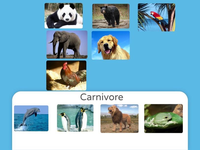 Carnivore by Prae Kullasatri