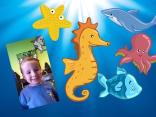 Carter's Aquarium Game by Betty Reynolds
