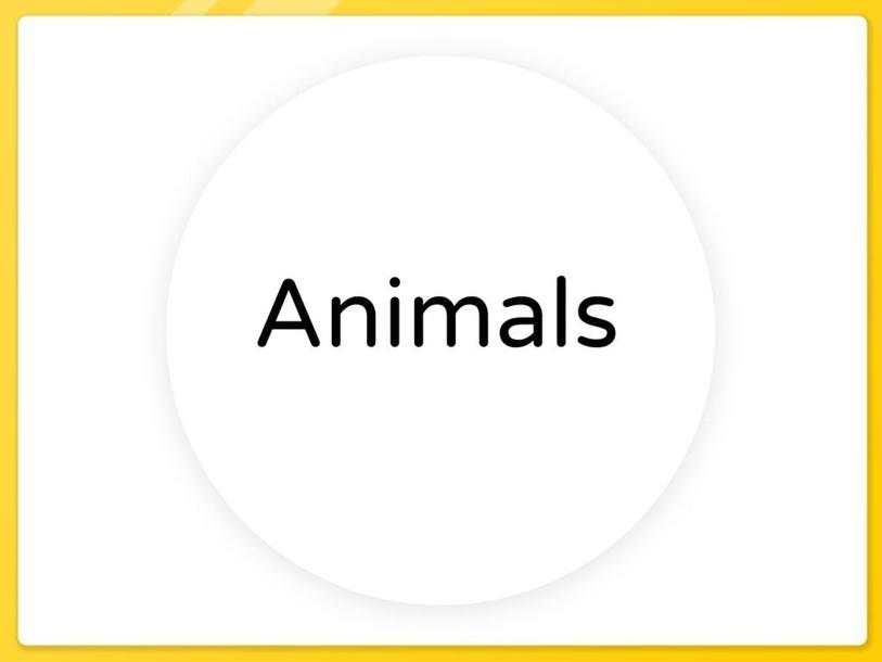 Categories/Items by Cristina Cardenas