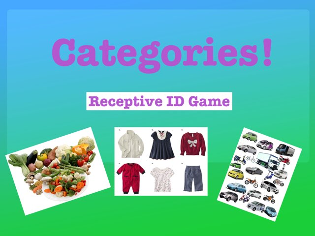 Categories! by Erica Lynn