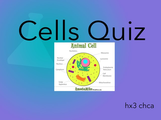 Cells by hx3 chca