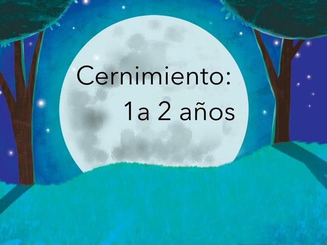 Cernimiento 1-2 by Nicolle Rios