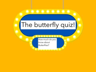 Charlotte's Butterfly Quiz  by Charlotte Pancakes