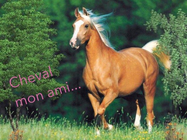 Cheval Mon Ami by Martine Freymann