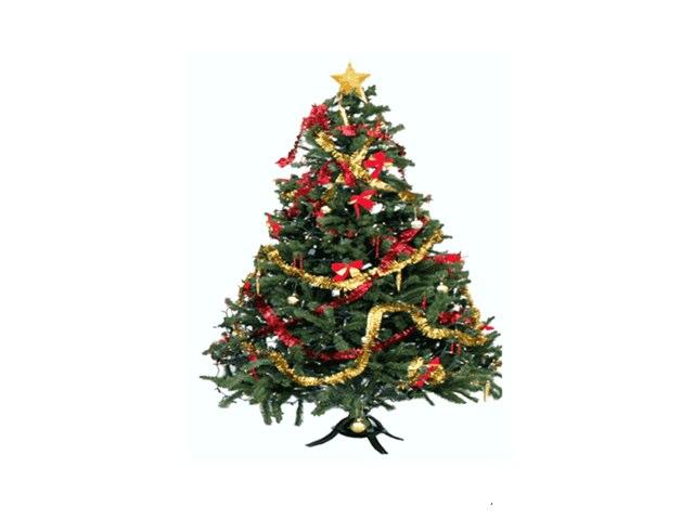 Christmas Tree by Jen VanHorn