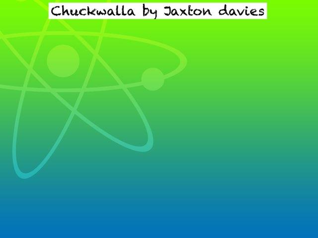 Chuckwalla by Amy Clay