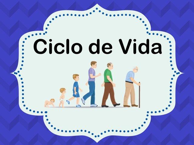 Ciclo de vida/ Life cycle by Rosalva Correa