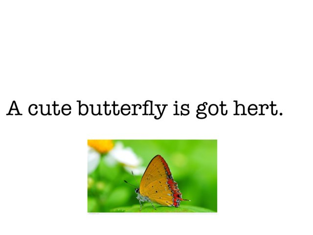 Circle The Noun by Khoua Vang