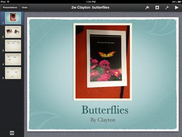 Clayton Butterflies by P302 SAS