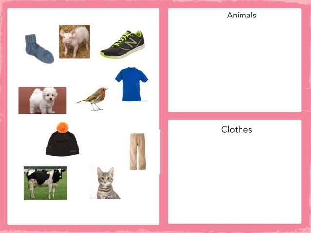 Clothing And Animal Sort by Nicole reybok