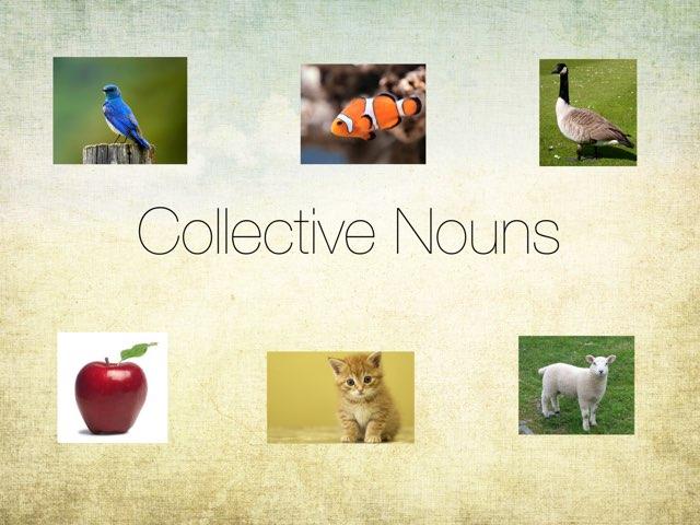 Collective Nouns  by Britne Kiener