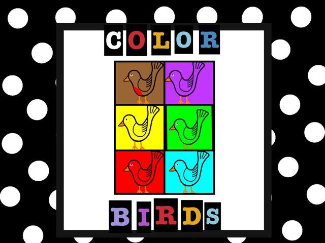 Color Birds  by Jennifer