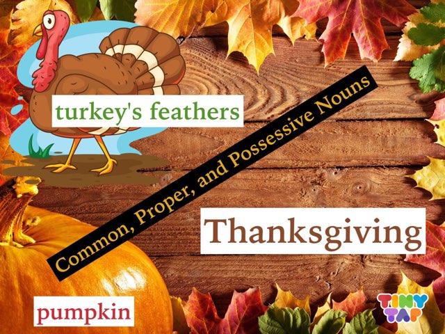 Common, Proper, and Possessive Nouns-Thanksgiving Theme by Jennifer