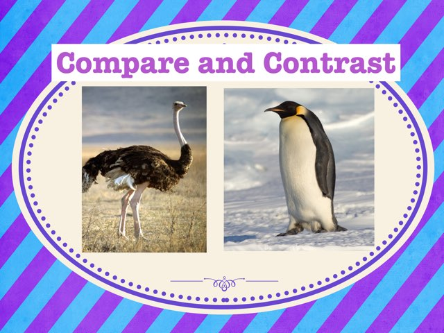 Compare and Contrast by Hannah Lockaby