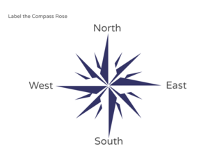 Compass Rose by Julio Pacheco