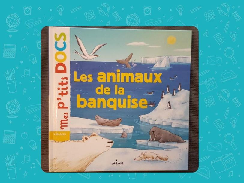 Connais tu les animaux de la banquise ? by Choussila Bordeaux