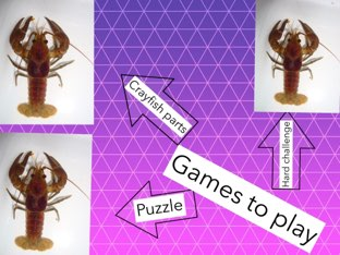 Crayfish Game By Dyvan by Chris  Smith