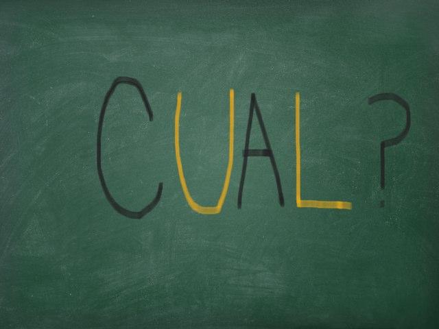 Cual? by Carlos Montes