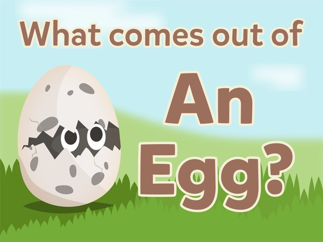 What Comes Out Of An Egg? by Tiny Tap