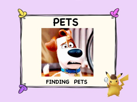 FINDING PETS by ShowAnd Text