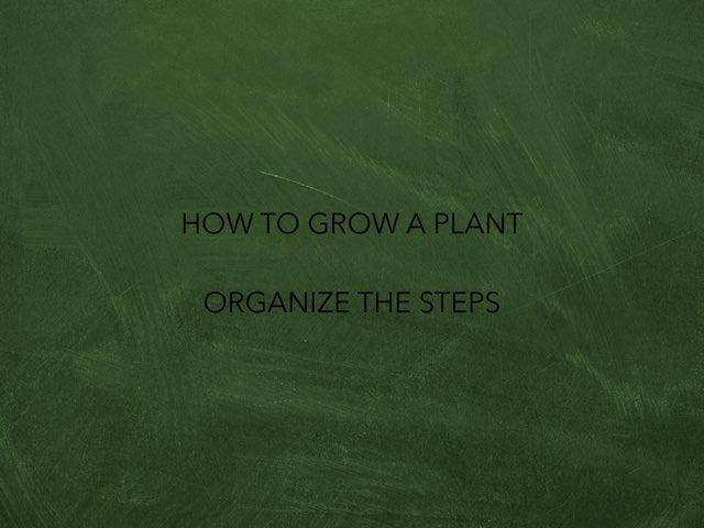 Steps To Grow A Plant by Tatiana Pricevicius