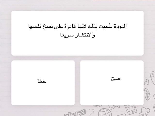 أمن المعلومات by Norah Almarhabi