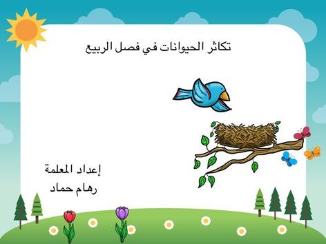 تكاثر الحيوانات by riham hammad