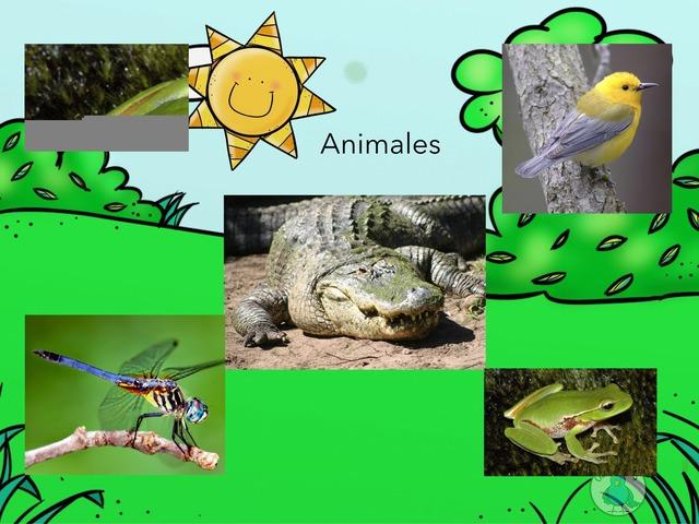Los Animales Vertebrados by María Victoria Lorido Blanco