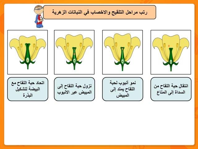 التلقيح والاخصاب في النباتات الزهرية by Baddow A.M.N