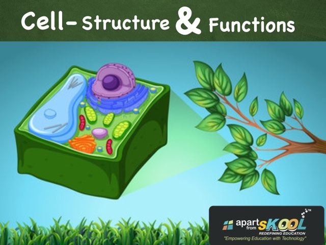 Cell- Structure & Functions by TinyTap creator