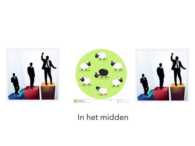 Taalrex 2.1.4 by Jaap van Oosteren