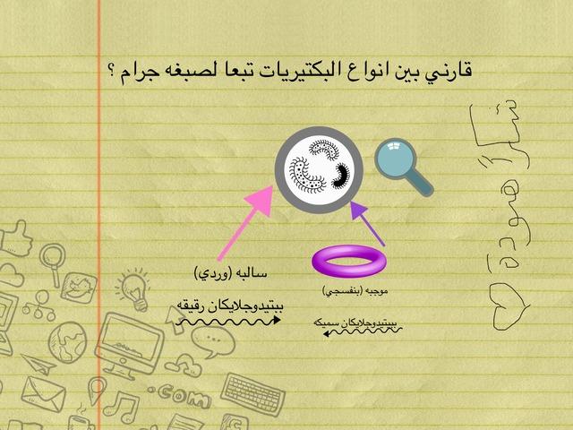 بكتيريا صبغه جرام  by Wardah Al-Hammadi