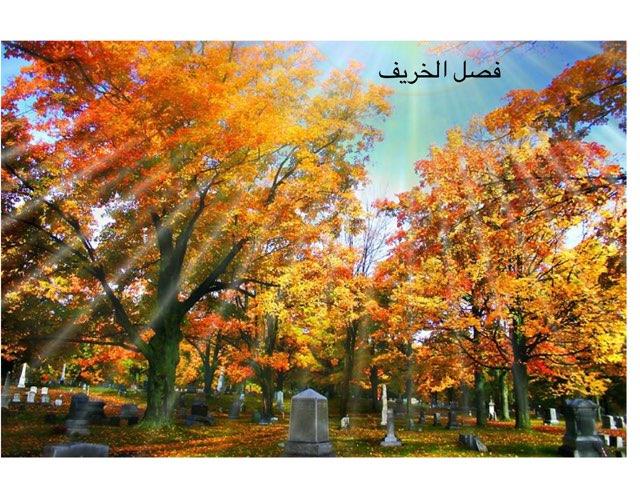 فصل الخريف تربيه خاصه-الجنان by חדיגה עאמר