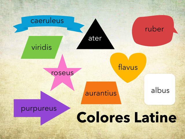 Colores Latine by Leslie Hooper