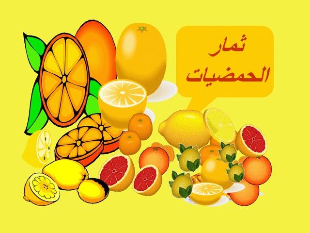 الحمضيات by סלסביל אלעמור