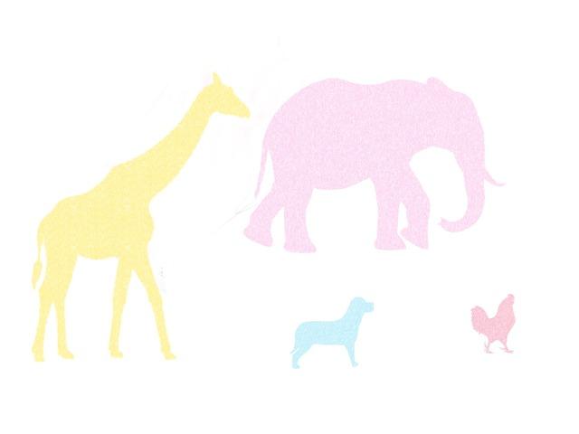 Zwierzęta by Grzesiek Wojciul