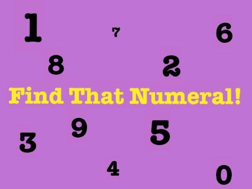 Find That Numeral! by Jennifer Odermatt