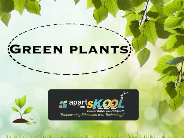 Plants  by TinyTap creator