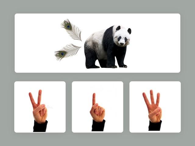 Panda Wil Een Vriendje. Aantal Vingers.(1) by jole gielen
