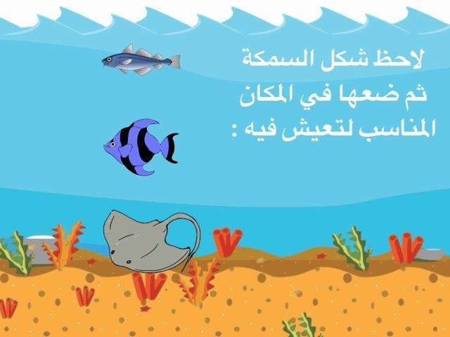 اين تعيش الاسماك by Abla amoon