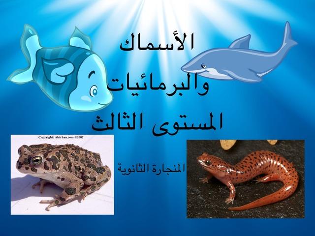 الاسماك والبرمائيات by احمد كريري