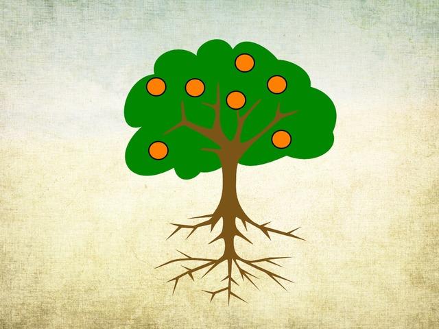 חלקי העץ- פעילות כיתתית  ט1 תשעח by Hagar Keshet