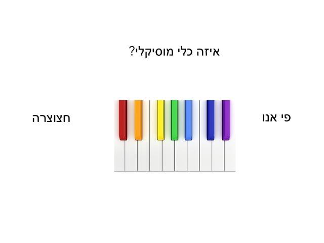 כלי המוסיקלי by Guzel Gelfond
